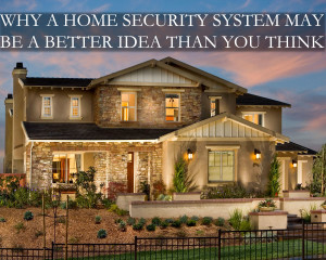 do you need home security